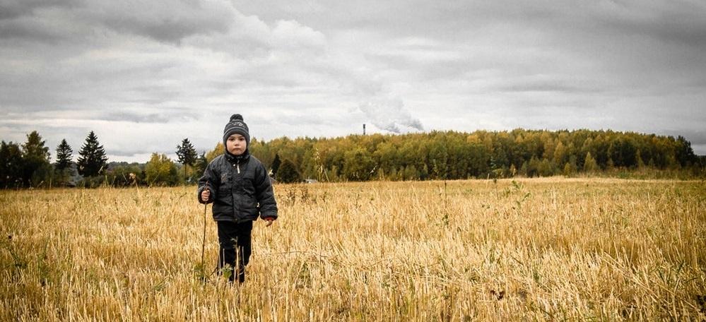 Boy in field of yellow